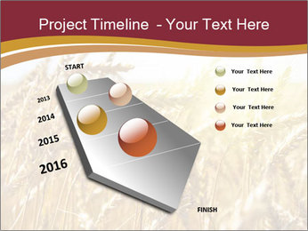 0000083010 PowerPoint Template - Slide 26