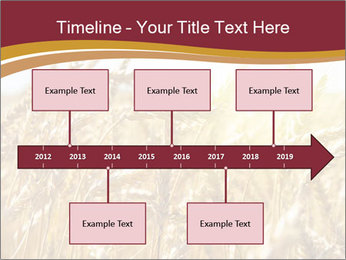 0000083010 PowerPoint Template - Slide 28
