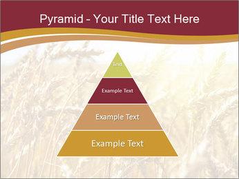 0000083010 PowerPoint Templates - Slide 30