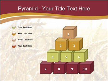 0000083010 PowerPoint Template - Slide 31