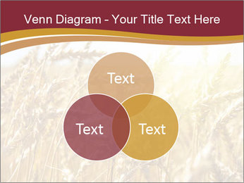 0000083010 PowerPoint Templates - Slide 33