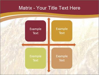 0000083010 PowerPoint Templates - Slide 37