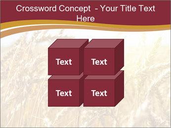 0000083010 PowerPoint Templates - Slide 39