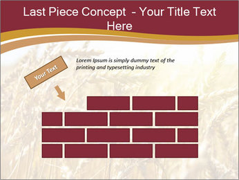 0000083010 PowerPoint Template - Slide 46