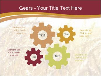 0000083010 PowerPoint Templates - Slide 47