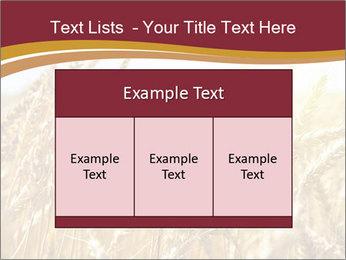 0000083010 PowerPoint Templates - Slide 59