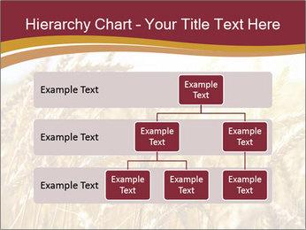 0000083010 PowerPoint Templates - Slide 67