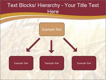 0000083010 PowerPoint Templates - Slide 69
