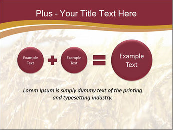 0000083010 PowerPoint Template - Slide 75