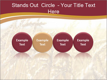 0000083010 PowerPoint Template - Slide 76