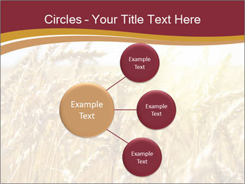 0000083010 PowerPoint Templates - Slide 79