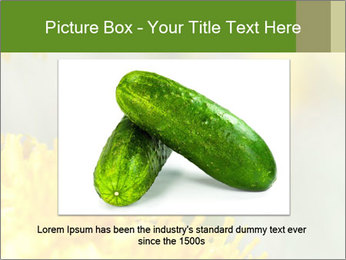 0000083013 PowerPoint Template - Slide 16