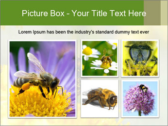 0000083013 PowerPoint Template - Slide 19