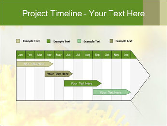 0000083013 PowerPoint Template - Slide 25