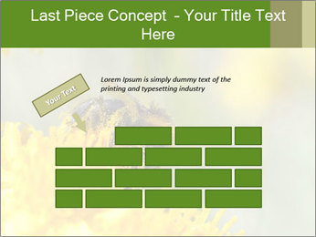 0000083013 PowerPoint Template - Slide 46