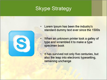 0000083013 PowerPoint Template - Slide 8