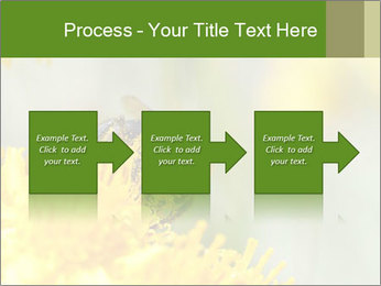 0000083013 PowerPoint Template - Slide 88