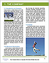 0000083015 Word Template - Page 3