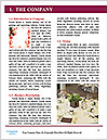 0000083019 Word Template - Page 3