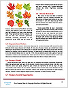 0000083019 Word Templates - Page 4