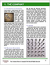 0000083024 Word Template - Page 3