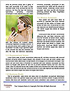 0000083025 Word Template - Page 4