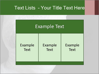 0000083026 PowerPoint Templates - Slide 59