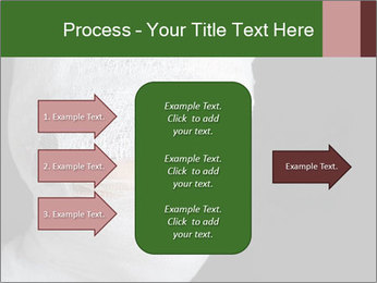 0000083026 PowerPoint Templates - Slide 85