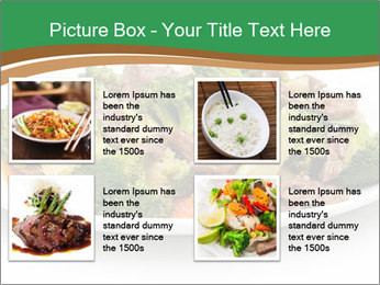0000083028 PowerPoint Template - Slide 14