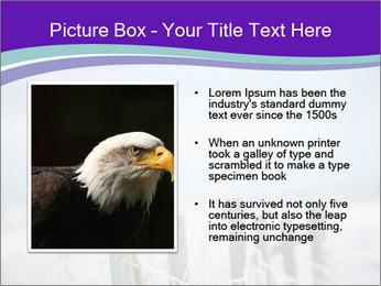 0000083032 PowerPoint Template - Slide 13