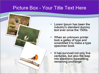 0000083032 PowerPoint Template - Slide 17