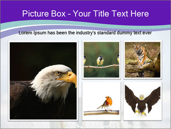 0000083032 PowerPoint Template - Slide 19