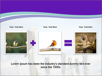 0000083032 PowerPoint Template - Slide 22