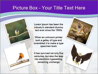 0000083032 PowerPoint Template - Slide 24