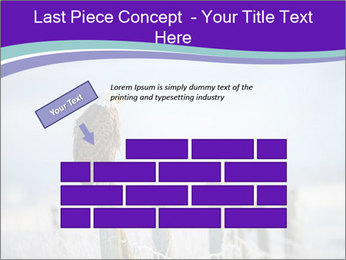 0000083032 PowerPoint Template - Slide 46