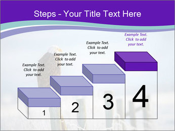 0000083032 PowerPoint Template - Slide 64