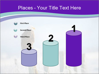0000083032 PowerPoint Template - Slide 65