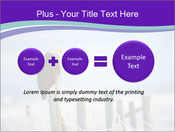 0000083032 PowerPoint Template - Slide 75