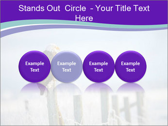 0000083032 PowerPoint Template - Slide 76