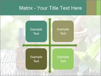 0000083044 PowerPoint Template - Slide 37