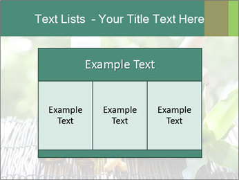 0000083044 PowerPoint Template - Slide 59