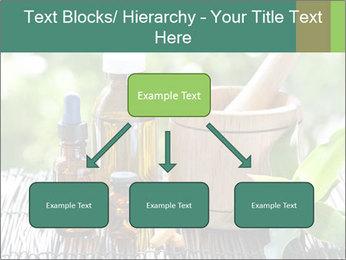 0000083044 PowerPoint Templates - Slide 69