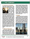 0000083045 Word Template - Page 3