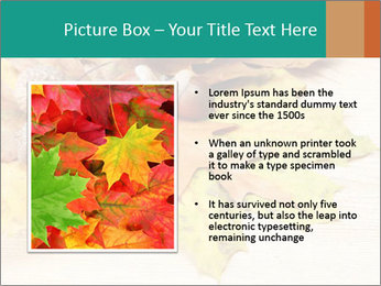0000083068 PowerPoint Template - Slide 13