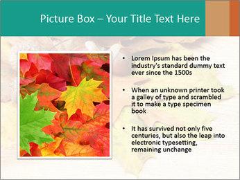 0000083068 PowerPoint Templates - Slide 13