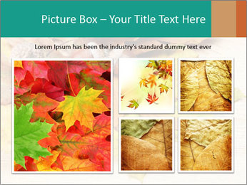 0000083068 PowerPoint Template - Slide 19