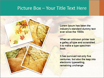 0000083068 PowerPoint Template - Slide 23
