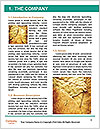 0000083068 Word Template - Page 3