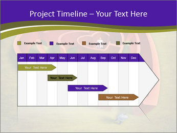 0000083075 PowerPoint Template - Slide 25