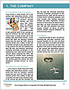 0000083081 Word Template - Page 3